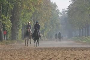 Centre d'Entraînement des chevaux de courses